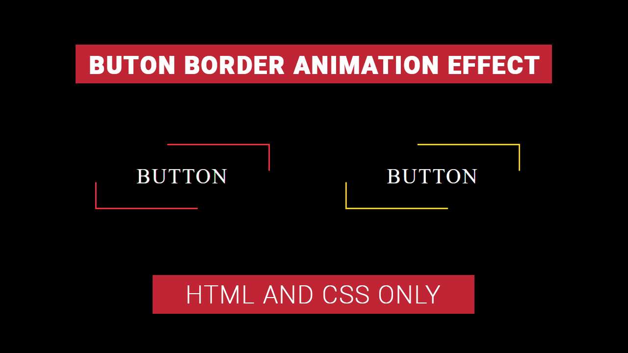 BORDER ANIMATION BUTTON IN HTML AND CSS