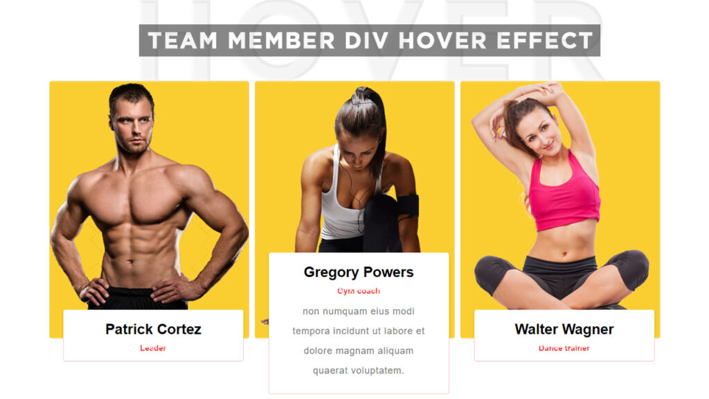 Our Team Div Hover Effect in HTML and CSS